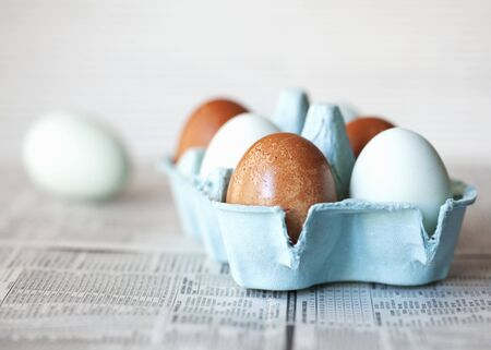 brownness: A box of brown and pastel blue eggs