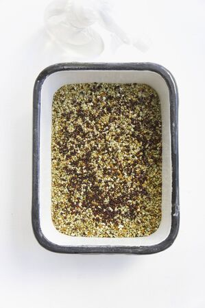 cress: Cress seeds in a planter