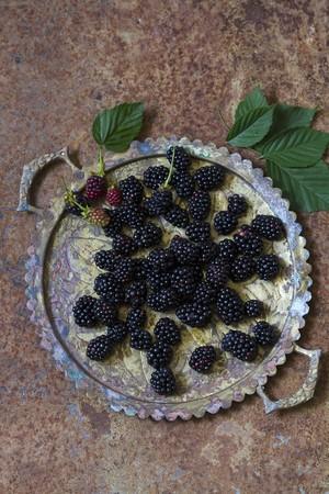 brambleberry: Fresh blackberries on a metal tray
