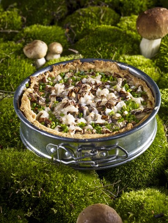 A mushroom tart in a spring form tin on a mossy forest floor LANG_EVOIMAGES