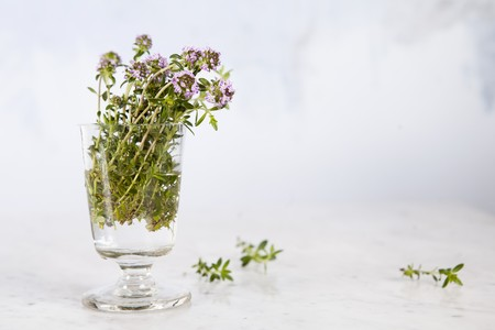 whiteness: Fresh flowering summer savory in a glass jar against a white background