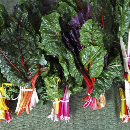 Swiss Chard at a organic farmer s market LANG_EVOIMAGES