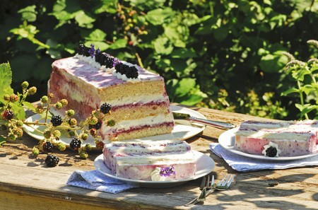 gateau: Blackberry and rosemary slices on a wooden table outdoors LANG_EVOIMAGES