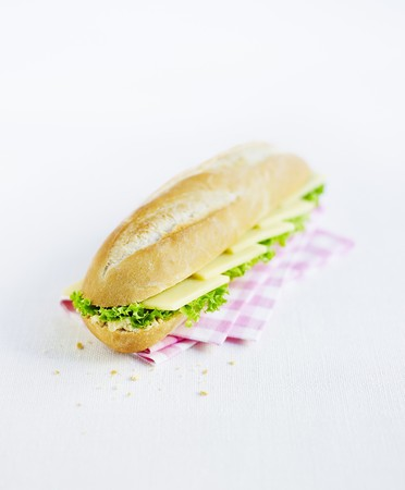 Cheese sandwich with lettuce