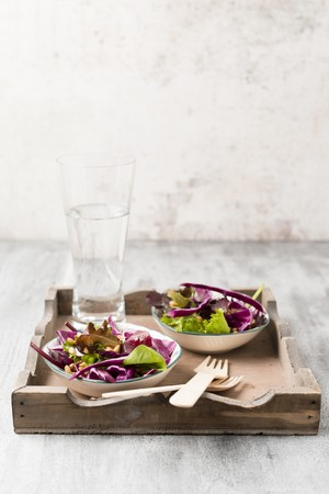 vaso de precipitado: Una ensalada de hojas de lechuga con col roja y el trigo