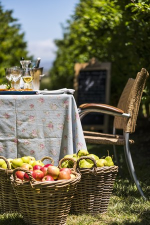 pip: Table in Orchard LANG_EVOIMAGES