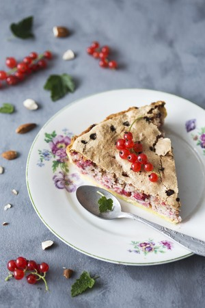 gateau: A slice of redcurrant and almond tart LANG_EVOIMAGES
