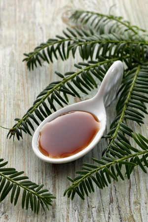 bough: Spruce tip syrup on a spoon LANG_EVOIMAGES