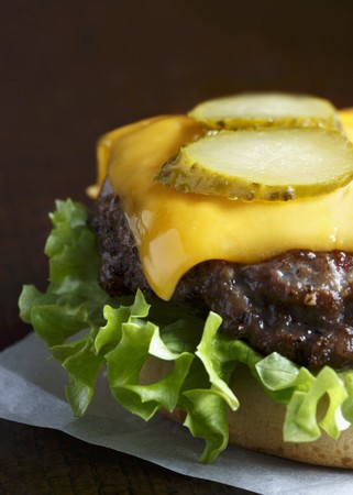 beefburger: Grilled beef burger on a white bun with curly lettuce, melted cheddar cheese and slices of gherkin LANG_EVOIMAGES