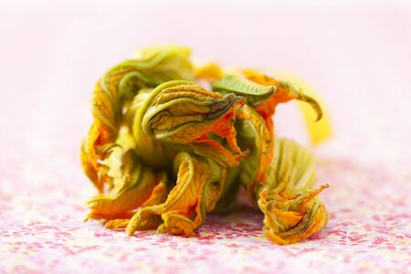 courgette: Courgette flowers LANG_EVOIMAGES