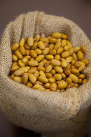 Organic beans in a bag