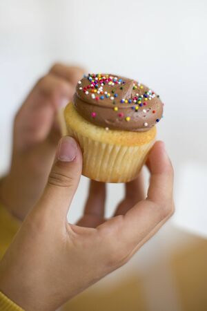 hundreds: Hands holding a cupcake topped with chocolate cream and colourfu hundreds and thousands