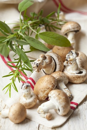 Fresh mushrooms, sage and rosemary LANG_EVOIMAGES