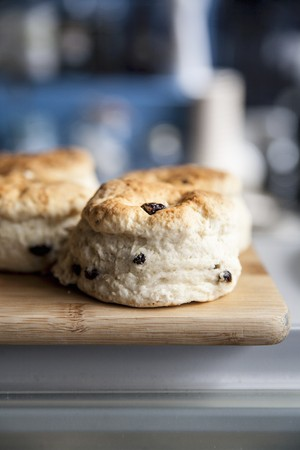 scones: Scones with raisins