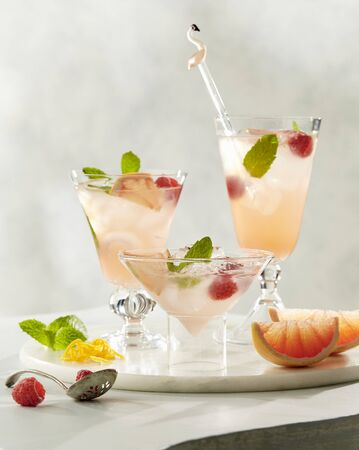 Paloma cocktails with grapefruit, raspberry, mint and ice LANG_EVOIMAGES