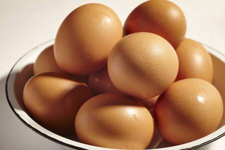 Fresh eggs from Lancaster County, Pennsylvnia, USA