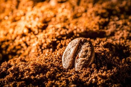 A coffee bean in ground coffee LANG_EVOIMAGES