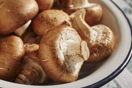 Fresh, brown mushrooms in an enamel bowl (close-up)