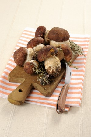 Fresh porcini mushrooms on a chopping board LANG_EVOIMAGES