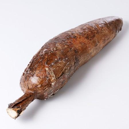 A cassava