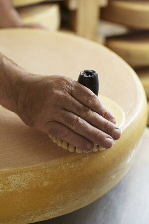 Mountain cheese being made in an alpine dairy in Tyrol LANG_EVOIMAGES