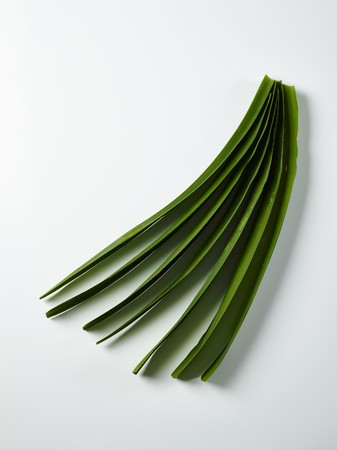 Pandan leaves on a white surface (seen from above)