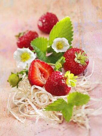 Strawberries with flowers LANG_EVOIMAGES