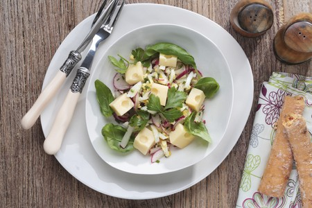Cheese salad with radishes and basil