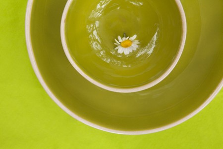 A daisy on a green ceramic plate LANG_EVOIMAGES