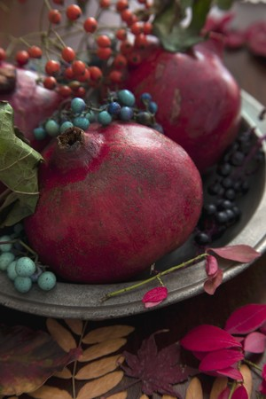 ides: Pomegranates with autumnal sprigs of berries on a pewter plate LANG_EVOIMAGES