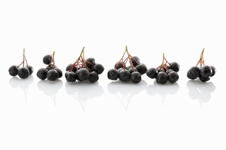 whiteness: Fresh aronia berries on a white surface