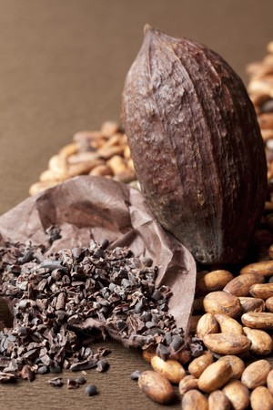 A cocoa fruit, whole cocoa beans and crushed cocoa beans LANG_EVOIMAGES