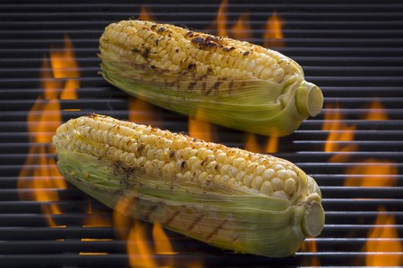 Seasoned corn-on-the-cob on a barbecue LANG_EVOIMAGES