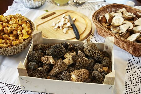 whiteness: Porcini mushrooms, chanterelle mushrooms and morel mushrooms on a table with a white tablecloth