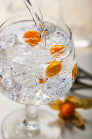 A gin and tonic with physalis LANG_EVOIMAGES
