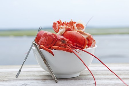 A bowl of lobster shells with the ocean in the background LANG_EVOIMAGES