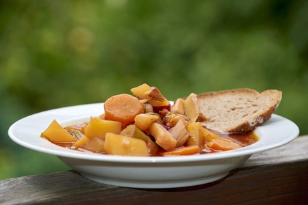 Potato stew with carrots and bread LANG_EVOIMAGES