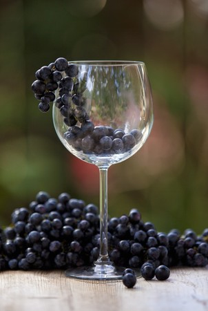 pinot noir: Pinot noir grapes with a wine glass