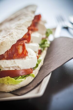 panino: A sandwich with tomato, mozzarella and spicy salami LANG_EVOIMAGES