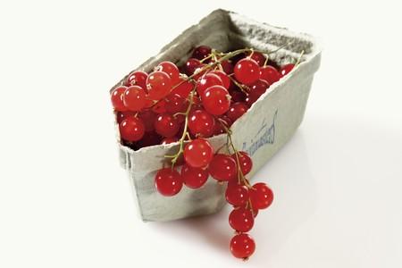 Redcurrants in a cardboard punnet LANG_EVOIMAGES