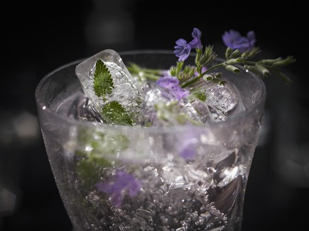 alcohol series: An exotic drink made with cat nip and ice cubes (edible flowers and petals frozen in ice cubes)