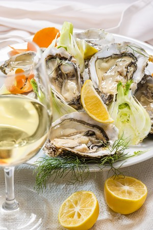 Fresh oysters with fennel and lemons and a glass of white wine