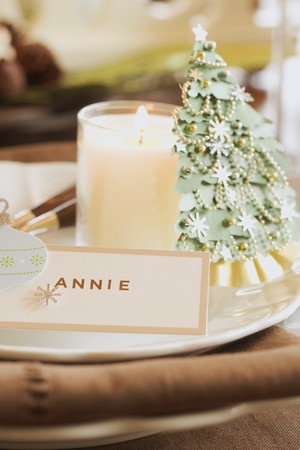 Christmas place-setting with place card LANG_EVOIMAGES