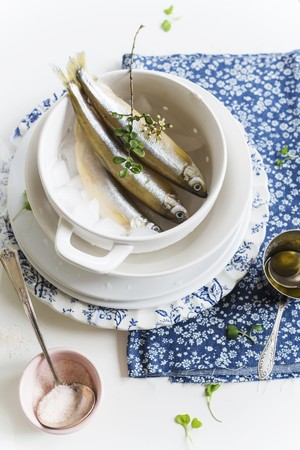 fresh water smelt: Fresh smelts on ice in a cup