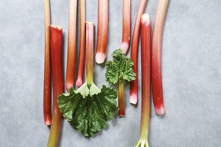Fresh rhubarb LANG_EVOIMAGES