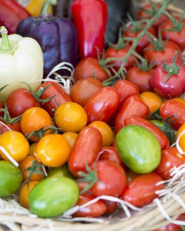 produits alimentaires: Diverses tomates au marché