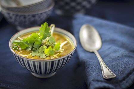Asian soup with bean sprouts and coriander LANG_EVOIMAGES