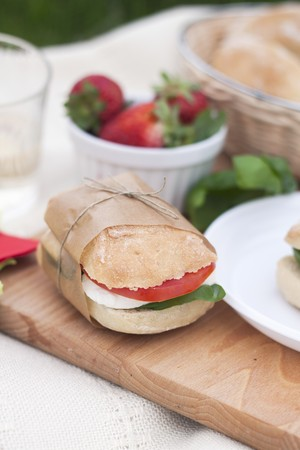 A caprese sandwich with ciabatta, mozzarella, tomato and basil LANG_EVOIMAGES