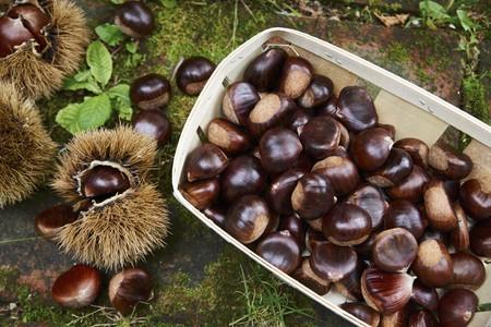 Chestnuts in a wooden basket LANG_EVOIMAGES