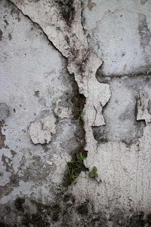 crevice: Detail of an old colonial wall in Asia, featuring a deep crevice or crack running vertically up the center due to layers of paint gone missing over the years with subsequent repainting. Stock Photo